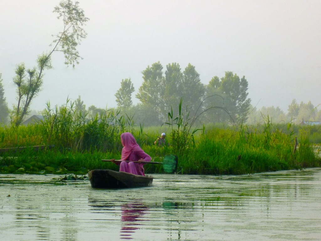11 Early Morning, Dal Lake